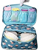 iSuperb Travel Bra Organizer Bag Underwear Pouch Waterproof Personal Garment Bag Case (Blue with Floral Pattern)