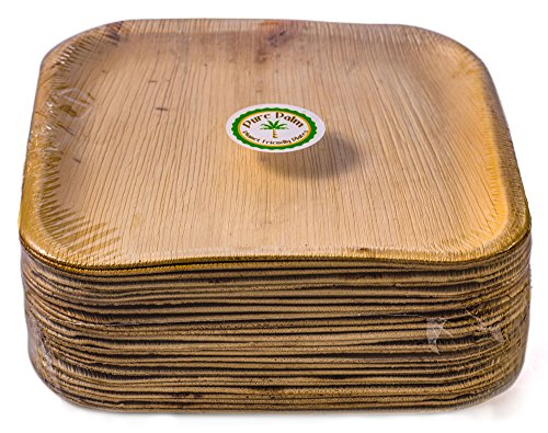 Green Charger Plates Square - Pure Palm Planet Friendly Plates; Upscale Disposable Dinnerware; All-Natural Compostable Plateware (10