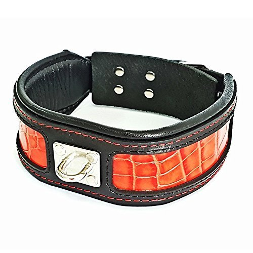 Red decoration L- fits a neck of 19.7 to 22.6 inch Red decoration L- fits a neck of 19.7 to 22.6 inch Bestia® Reptile Reptiles Real Leather Dog Collar. 6.3 cm Wide Soft Lining Leather Print Pattern. Very sturdy construction. M to XXL Made Europe.