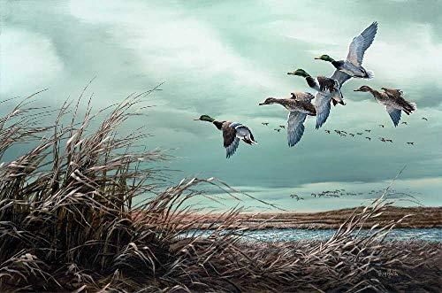 Terry Redlin - Skirting the Marsh - Mallards