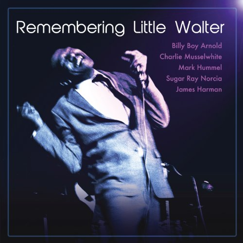 Sugar Ray - Remembering Little Walter - Zortam Music