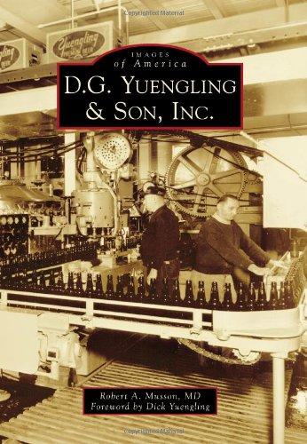 Yuengling Lager - 8