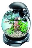 Tetra Fish Bowls