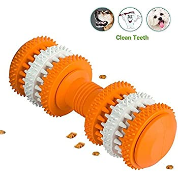 Amazon.com: DingTai Chew Ball for Dogs Tooth Cleaning Toy