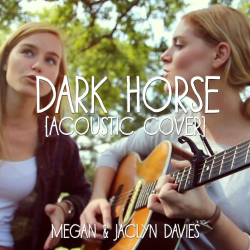 dark-horse-acoustic-cover-feat-jaclyn-davies