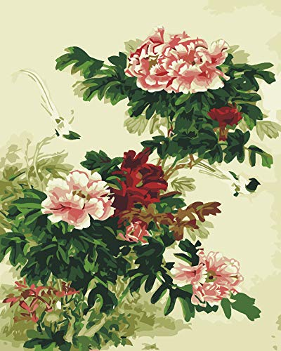- Yyboo Abstract Chinese Painting Peony DIY Oil Painting by Number Hand Painted Wall Decoration Artwork 40X50Cm