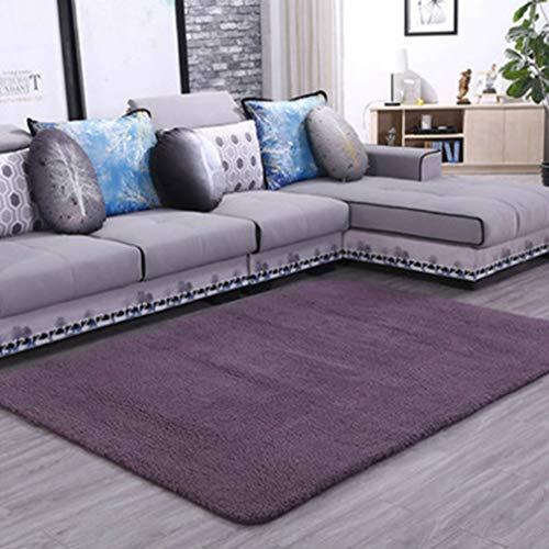 Solid Rectangular Area Rugs Soft Shag Living Room Children Bedroom Rug Anti-Slip Plush Carpets Home Decor Modern Indoor Outdoor Runners Nursery Plum 2' X 6' (Coloured Rugs Plum)