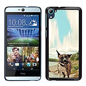 Stuss Case / Funda Carcasa protectora - Pit-Bull Tiger Boxer Dog - HTC Desire D826