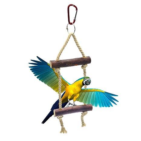Danigrefinb - Ganchos de Juguete para Loro, Loro, pájaro, Escalada ...