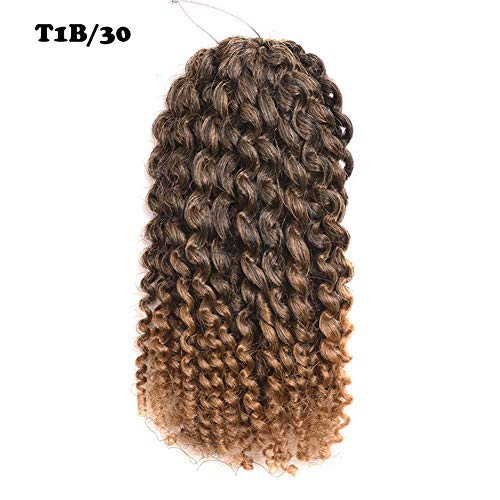 "2 Pack 8 inch 120gram Afro Kinky Curly Mali Bob Crochet Braids Twist Braiding Marley Braid Synthetic Hair Extensions (8""(2pack), t1b/30)"