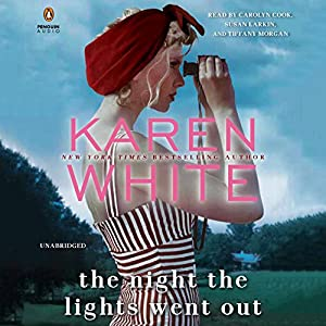 The Night the Lights Went Out Audiobook