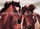 Wild Horses of the Dunes, Rich Pomerantz, 0762417757