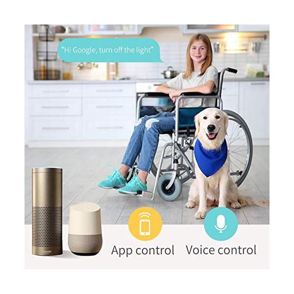 Presa Intelligente Wifi Smart Plug Spina Wireless 16A 3680W, Funzione Timer, Compatible con SmartThings, Alexa, Google… 5 spesavip