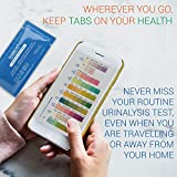 Multi-Parameter Urine Test Strips for Urinary Tract Infection (UTI) | Individually Packed, Accurate, Easy with Mobile App | Get Medical Grade Urinalysis at Home | 20 Pack