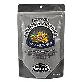 Pangea Gecko Diet Breeding Formula (16 oz)