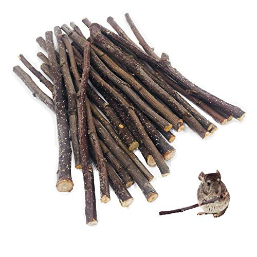 William Craft (100g Apple Sticks Pet Chew Toys Treats for Chinchilla Guinea Pigs Rabbits Squirrel Hamster