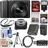 Panasonic Lumix DMC-ZS100 4K Wi-Fi Digital Camera (Black) 64GB Card + Case + Flash + Battery & Charger + Tripod + Strap + Kit