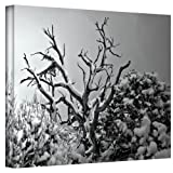 Art Wall When Nothing Else Exists Wrapped Canvas Art by Mark Ross, 18 by 24-Inch