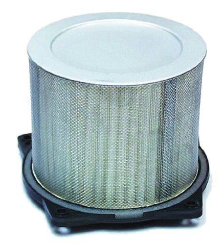 Hiflofiltro HFA3603 Premium OE Replacement Air Filter