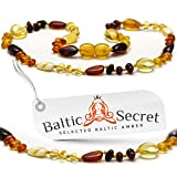 New Amber Teething Necklace 11.6 inch MLT.P-mix