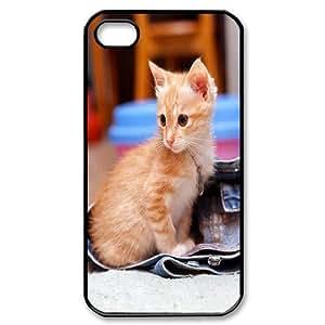 Iphone 4,4S Cat Phone Back Case Custom Art Print Design Hard Shell Protection LK068422