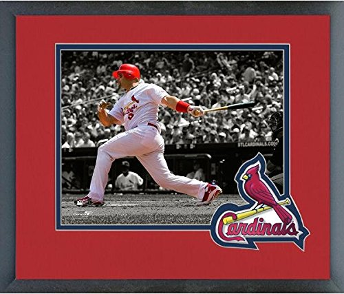 Albert Pujols St. Louis Cardinals MLB Action Photo (Size: 13