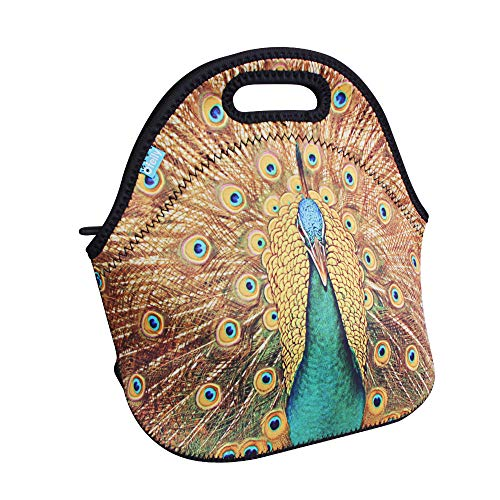 (Lunch Boxes, OFEILY Lunch Tote Lunch bags with Neoprene(Middle,Peacock))