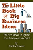 The Little Book of Big Business Ideas: Starter Ideas to Ignite Your Entrepreneurial Spirit