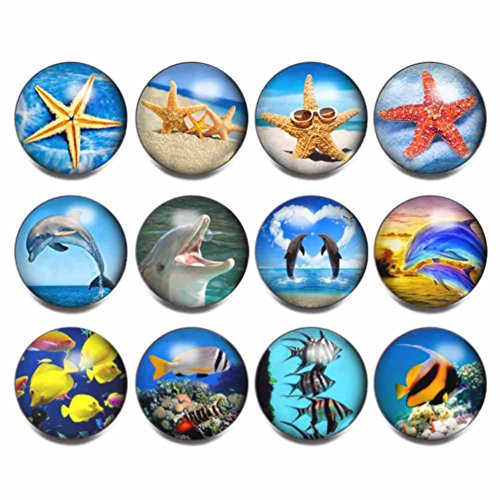 (soleebee 12pcs Mixed Aluminum Glass 18mm Snap Buttons Jewelry Charms, Starfish Dolphin Fish (Set B))