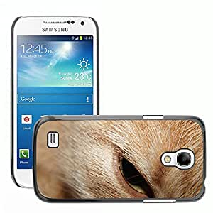 GoGoMobile Slim Protector Hard Shell Cover Case // M00124103 Cat Head Eye Beauty Noble Portrait // Samsung Galaxy S4 Mini i9190