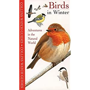 Birds in Winter (Collins Watch Guide)