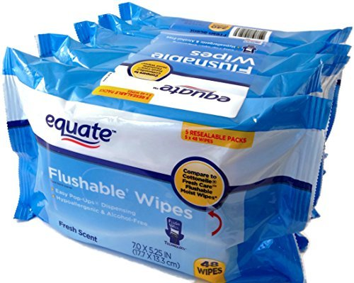 Price comparison product image Equate Flushable Wipes 5-Pack of 48 Ea. (240ct)