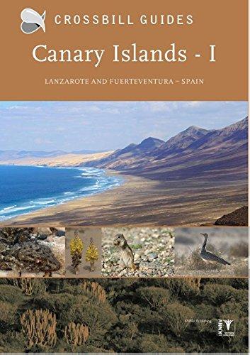 Canary Islands: Vol. 1: Fuerteventura and Lanzarote - Spain