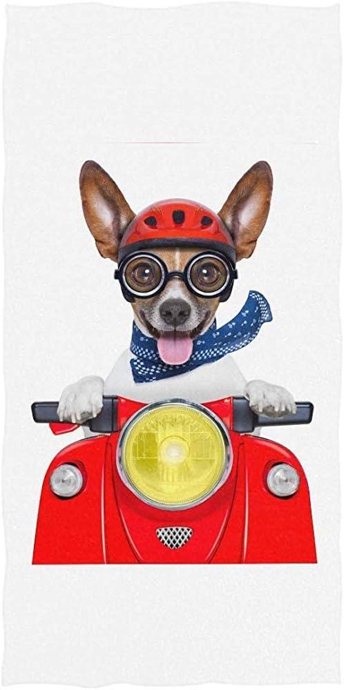 Mantas de Toallas de Microfibra de Secado r/ápido para Deporte Precious Meet Divertido Perro de Moto Feliz con Manta de Toalla de Playa de Piscina de Casco