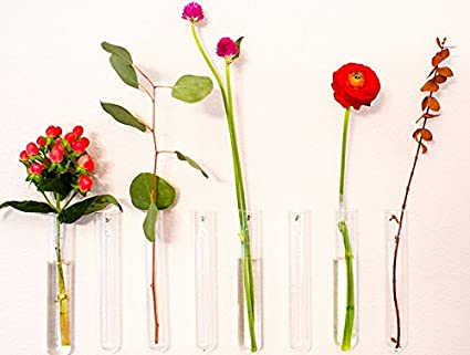 Amazon Hanging Glass Wall Vases Set Of 3 Home Kitchen
