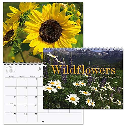 2020 Wildflowers Wall Calendar- 12