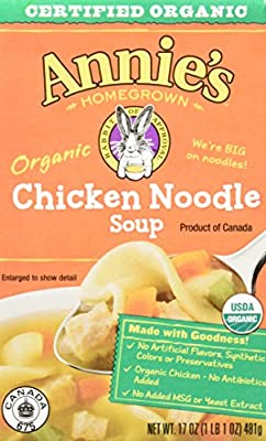 Annie's Organic Soup, Chicken Noodle Canned Soup, 17 oz (Pack of 8)