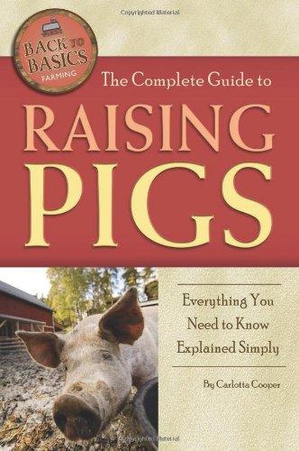 Raising Pigs - 5