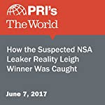 How the Suspected NSA Leaker Reality Leigh Winner Was Caught |  The World staff