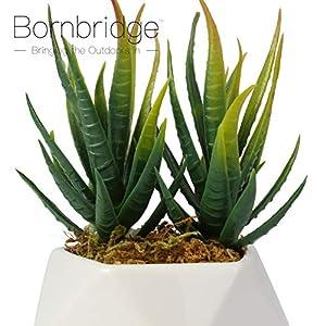 Bornbridge Artificial Succulent - Fake Succulent in Planter - Faux Succulent with Ceramic Geometric Planter - Aloe Succulent - Artificial Potted Plant (Single) 5
