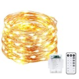 Rarlight 33ft 100 LED String Lights Dimmable with Remote Control, Waterproof Outdoor & Indoor Decorative Lights for Bedroom, Garden, Patio, Parties (Copper Wire Lights, Warm White)