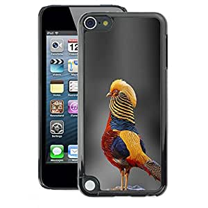 A-type Arte & diseño plástico duro Fundas Cover Cubre Hard Case Cover para Apple iPod Touch 5 (Grey Blurry Nature Tropical Bird Yellow)
