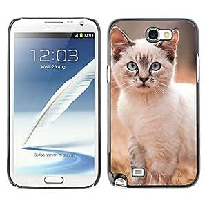 Be Good Phone Accessory // Dura Cáscara cubierta Protectora Caso Carcasa Funda de Protección para Samsung Note 2 N7100 // Siberian Cat Kurilian Bobtail Kitten