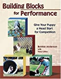 Building Blocks for Performance, Bobbie Anderson, 1577790375