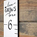 Growth Chart Art | Wooden Growth Chart Ruler for