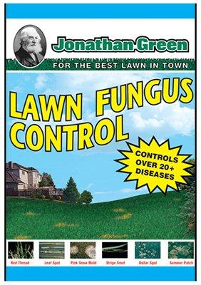 Dollar Spot Lawn Fungus - 5