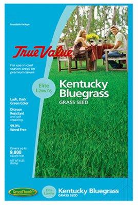 Barenbrug USA TVKBG7 TV 7 lb Kentucky Bluegrass Seed -