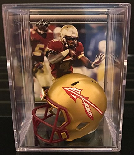 Florida State Seminoles NCAA Helmet Shadowbox w/ Dalvin Cook card