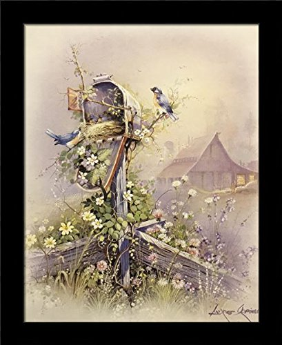 Blk Wall Mailbox (Black 1 inch Framed Robin Blue & NEST in Mail Box, (Bird / 48-8X10-I) 8x10 inch Andre, Art Print & Poster)