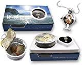 """Freshwater Cultured Pearl (5-7mm) in Oyster Set Rhodium Plated Twin Dolphins Necklace +Stainless Chain 18"""""""